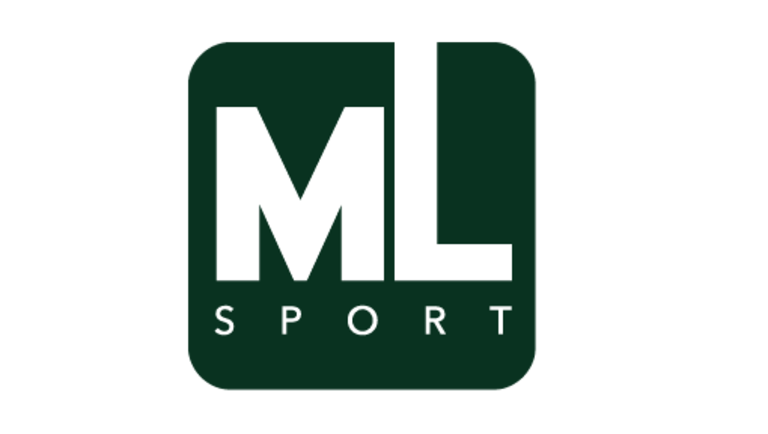 logo_mlmarketing